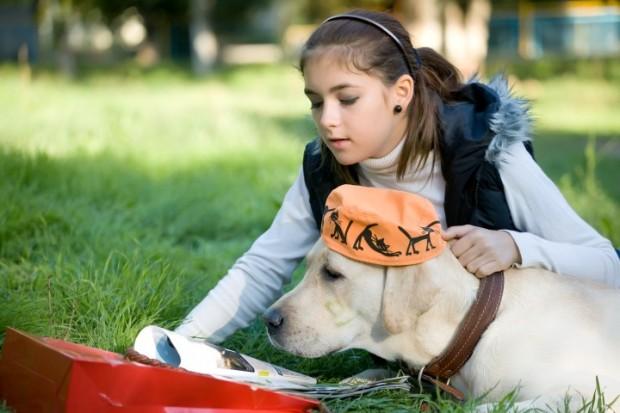 garota brincando com cão